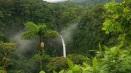 Foresta-tropicale